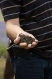 почва руки Стоковые Изображения RF