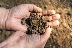 почва рук Стоковые Изображения