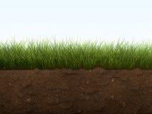 почва травы стоковое изображение