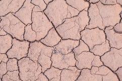 Почва треснутая засухой Стоковое Фото