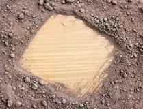 Почва для растущих заводов на древесине стоковое фото rf