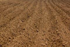 Почва Стоковые Фото