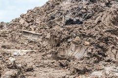 Почва. Стоковые Фото