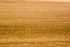почва backgorund Стоковые Изображения RF