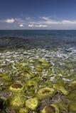 почерните море Стоковое Изображение RF