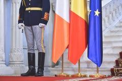 Почетный караул во время воинской церемонии Стоковая Фотография