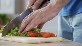 Почта конца-вверх вручает томаты вырезывания и салат покидает делать vegetable салат сток-видео