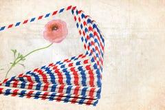 Почта цветка Почта - сообщение - память - год сбора винограда влюбленности Стоковые Изображения RF