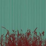 пошущенный над красный цвет травы предпосылки голубой Стоковое Изображение RF