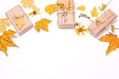 Подарки в рамке желтых листьев и цветков Стоковое Изображение RF