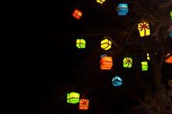 Подарки на рождество в дереве Стоковые Изображения RF