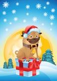 Подарок на рождество мопса Стоковая Фотография RF