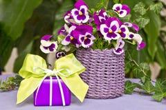 Подарок с ярким ым-зелен смычком Стоковые Фотографии RF