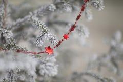 Подарок для рождества Стоковое Фото