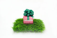 Подарок Chrismas Стоковые Изображения