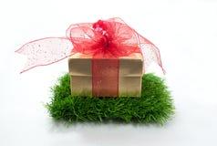 Подарок Chrismas Стоковые Изображения RF