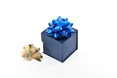 Подарочная коробка и seashell Стоковые Фото