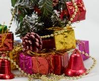 Подарочная коробка около рождественской елки стоковое фото rf