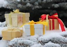 Подарочные коробки с смычками на ели разветвляют в снеге Стоковое Изображение RF