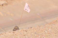 Податель флага Стоковые Изображения