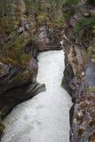 Подача каньона Стоковые Изображения RF