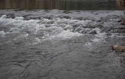 Подача реки Стоковое фото RF