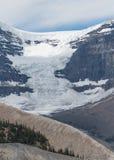 Подачи ледника Андромеды вниз к долине Стоковые Изображения RF