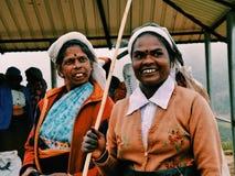 Подборщики чая стоковая фотография