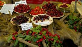 Подвержение к некоторым разнообразиям сладостных вишен Стоковое Фото