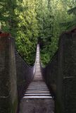 подвес vancouver lynn каньона Канады моста Стоковые Фото