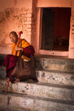 Подвижник монаха виска Mahabodhi, Bodh Gaya, Индии Стоковое Изображение RF