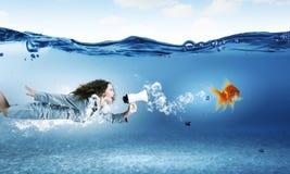 подводная женщина Стоковое Фото