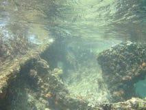 подводная развалина Стоковое фото RF