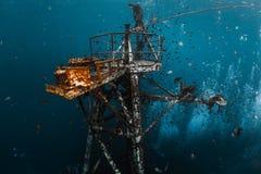 Подводная съемка развалины корабля Стоковое фото RF