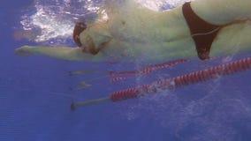Подводный взгляд к профессиональному ходу ползания заплывания пловца в бассейне, достигая стену и делая поворот сальто сток-видео