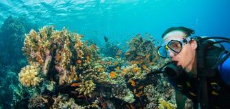 Подводный коралловый риф с дном моря водолаза акваланга человека исследуя Стоковое Фото
