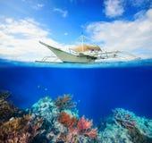 Подводный коралловый риф scena стоковые изображения rf
