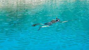 Подводный охотник с оружием в маске speargun Стоковое Фото