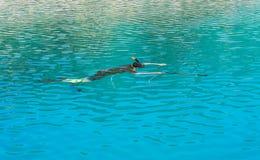 Подводный охотник с оружием в маске speargun Стоковые Фотографии RF