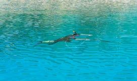 Подводный охотник с оружием в маске speargun Стоковые Фото