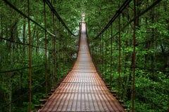 под водой подвеса в сентябре дня моста шлюпок славной Стоковые Изображения