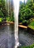 под водопадом Стоковые Фотографии RF