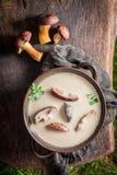 Подготавливайте для еды супа гриба с грибами и петрушкой Стоковое Фото