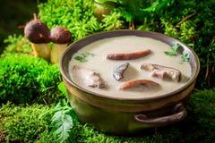 Подготавливайте для еды супа гриба сделанного благородных грибов Стоковые Изображения