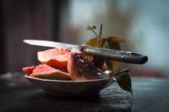 подготавливайте для еды Стоковое фото RF