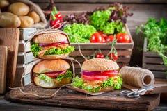 Подготавливать вынос гамбургера с свежими овощами Стоковое Фото