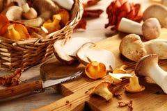Подготавливать свежие грибы устрицы в кухне стоковые изображения