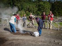 Подготавливать тушёное мясо Furnas Стоковое Изображение