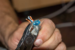 Подготовка кабеля LAN Стоковое фото RF