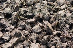 Подготовка почвы Стоковое Изображение RF
